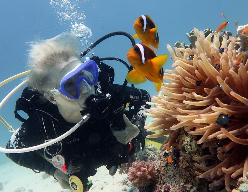 egypt-diving-min.jpg