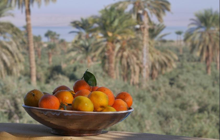 фрукты из Египта