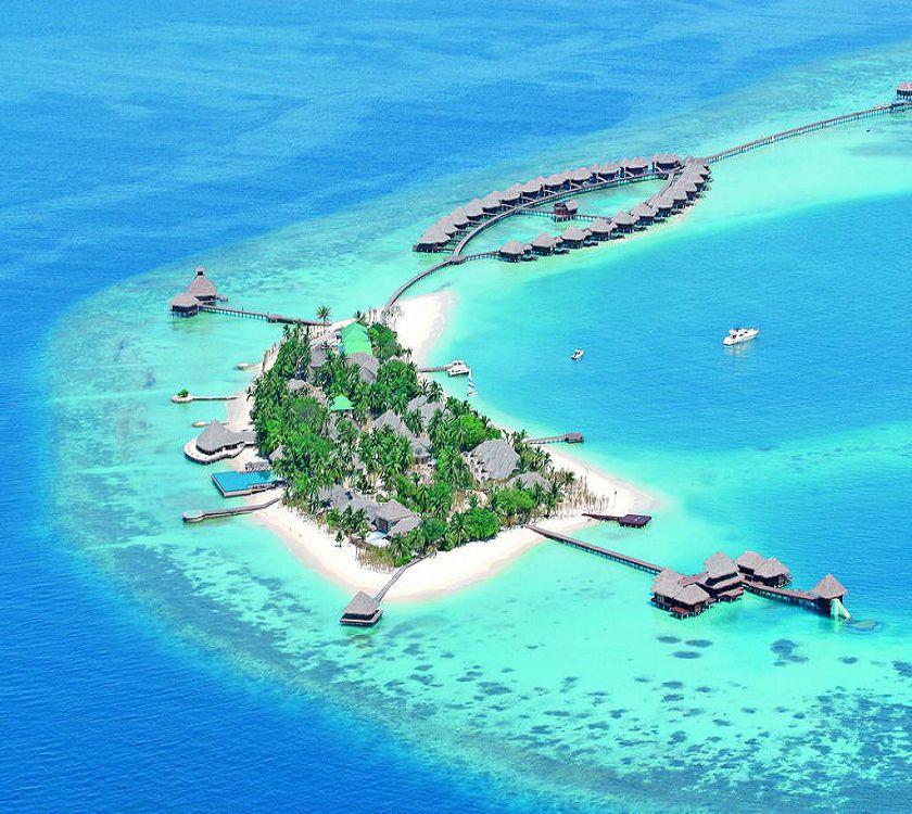 maldivy2.jpg